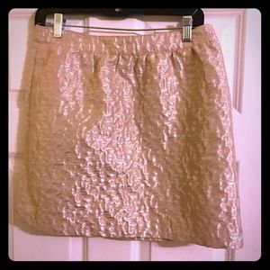 Beige and Silver Brocade Skirt